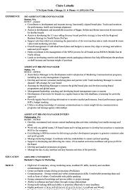 Make Assistant Brand Manager Resume Samples