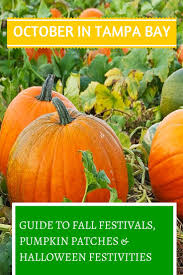 Pumpkin Patch Tampa 2014 by 30 Best Just For Fun Images On Pinterest Parents April Fools