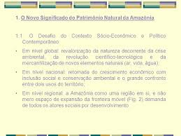 amazonia si e social c t i para conhecimento e uso do patrimônio da amazônia