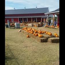 Pumpkin Patches In Okc by Orr Family Farm 44 Photos U0026 18 Reviews Amusement Parks 14400
