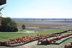 Pumpkin Farm Maryland Heights Mo by Home