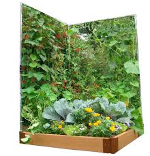 Garden Wall Trellis Ideas 9 Vegetable Gardens Using Vertical Gardening 1125