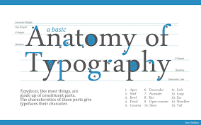 Typography Terms Anatomy Of Yordanh On Deviantart