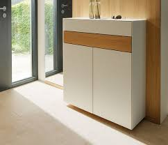 Simms Modern Shoe Cabinet Assorted Colors by 9 Best Shoe Storage Console Images On Pinterest Ikea