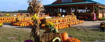 Kent Island Pumpkin Patch by Fall Vacation Ideas Visit Maryland