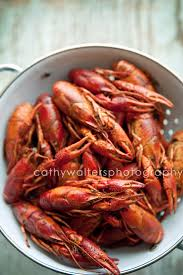 Pinterest Crawfish Boil Decorations by 78 Best Crawfish Images On Pinterest Louisiana Cajun Recipes