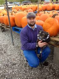 Pumpkin Patch Raleigh Nc 2014 by Retro Rover Pugs And Pumpkins