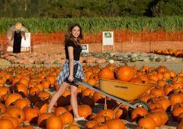 Pumpkin Patch Jefferson Blvd Culver City by Mckaley Miller Mr Bones Pumpkin Patch 03 Gotceleb