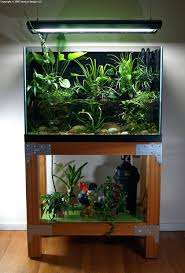 Fish For Aquascape – Homedesignpicture.win Creative Cheap Aquarium Decoration Ideas Home Design Planning Top Best Fish Tank Living Room Amazing Simple Of With In 30 Youtube Ding Table Renovation Beautiful Gallery Interior Feng Shui New Custom Bespoke Designer Tanks 40 2016 Emejing Good Coffee Tables For Making The Mural Wonderful Murals Walls Pics Photos