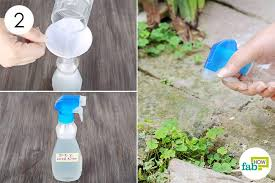 Store In A Spray Bottle And To Make DIY Weed Killer