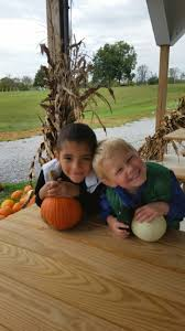 Southern Ohio Pumpkin Patches by 10 Great Pumpkin Patches In Kentucky