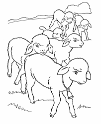 Full Size Of Coloring Pagelamb Pages Sheep Color Page Animal Large Thumbnail