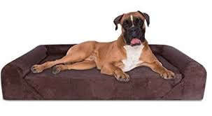 Top Rated Orthopedic Dog Beds by Best Rated Dog Beds For Large Dogs For Extra Comfort And Support