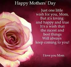 Siempre Te Voy A Querer Garden by 574 Best Mothers Day Images On Pinterest Mothers And Teddy Bears