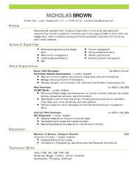 Insurance Resume Sample Valid Sales Luxury Painter Cv Yeniscale