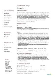 Professional Waitress Resume Experience On A Bartender No Summary Examples