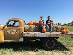 Sand Mountain Pumpkin Patch by Dew More At Dewberry Farm This Fall Macaroni Kid