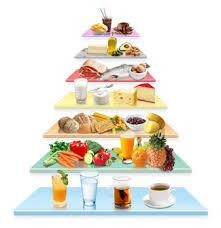 cuisiner équilibré pour une alimentation équilibrée planifions nos menus