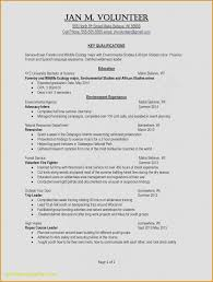 Drafter Resume Skills Examples Elegant Photos Resume Words To Use ...