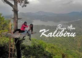 Pesona Alam Kalibiru Wates Kulonprogo Jogjakarta