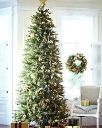Slim Christmas Tree Walmart 5 Foot Stand In 9