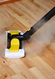 X5 Steam Mop On Laminate Floors by Steam Mops Reviews A Guide To Buying The Best Steam Mop Or