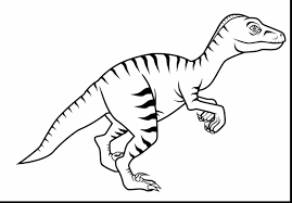 Fantastic Velociraptor Dinosaur Coloring Pages With Page