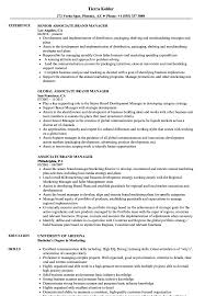 Download Associate Brand Manager Resume Sample As Image File