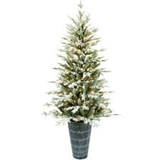 E8 45ft Pre Lit Fulton Frosted Christmas Tree