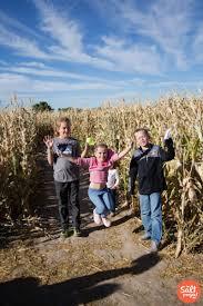 Pumpkin Patch Utah South Jordan by Crazy Corn Maze In West Jordan The Salt Project Things To Do