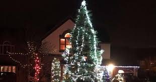 Which Christmas Tree Smells The Best Uk by How To Save A Droopy Christmas Tree Somerset Live