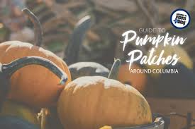 Nearest Pumpkin Patch Shop by To Pumpkin Patches Around Columbia Columbia Sc Moms Blog