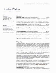 Portfolio Biography Sample Valid Resume Examples Bio Example Unique Helpful Include