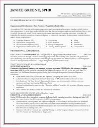 Administrative Assistant Resume Objective Professional Executive ... Executive Assistant Resume Objectives Cocuseattlebabyco New Sample Resume For Administrative Assistants Awesome 20 Executive Simple Unforgettable Assistant Examples To Stand Out Personal Objective Best 45 39 Amazing Objectives Lab Cool Collection Skills Entry Level Cna 36 Unbelievable Tips Great 6 For Exampselegant
