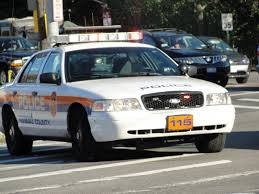 Crime Report Westbury Thieves Home Depot Shoplifter