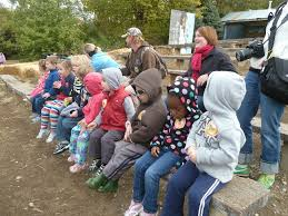 Valas Pumpkin Patch by Vala U0027s Pumpkin Patch Pictures The Learning Tree Preschool