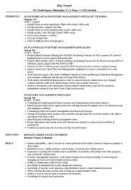 Inventory Control Resume Quick Cute Management Samples S Example Rf I145350