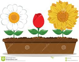 pot with different flowers stock vector image of sunflower 26944583
