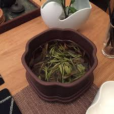 d馗o cuisine boutique 7 best 白茶 white tea images on tea teas and tees