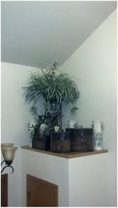Gallery Pictures For Outdoor Plant Shelf Ideas Indoor Ledge Decorating Built Bathroom Simple Design Foyer Kitchen