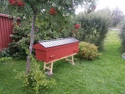 Bees & Bees - Lewis Family Farm Top Bar Hives Volusia Bkeepers Bee And Bkeeping Supplies For Sale Built Amazoncom Hive Patio Lawn Garden Natural Brisbane Backyard Bees Feeder Set Up Behind Follower Board In Top Bar Hive Bkeeper Bush Foundationless Frames Long Hives Eco Box Is Proud To Present The Bee Sanctuary Eco Box Like A Girl Langstroth Vs Top Bar Hive Inside A 1 Central Indiana Association Deluxe Assembly Only Complete Kit Made Maine