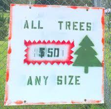 Christmas Tree Names by Tumbi Umbi Icklegen Com