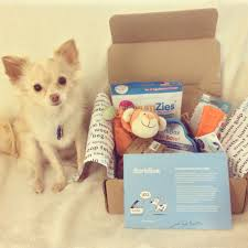 Reviews   Fawnandwhite Free Extra Toy In Every Barkbox Offer The Subscription Newly Leaked Secrets To Barkbox Coupon Uncovered Double Your First Box For Free With Ruckus The Eskie Barkbox Promo Venarianformulated Dog Fish Oil Skin Coat Review Giveaway September 2013 Month Of Use Exclusive Code Santa Hat Get Grinch Just 15 14 Off Hello Lazy Cookies Lazydogcookies Twitter Orthopedic Ultra Plush Pssurerelief Memory Foam That Touch Pit