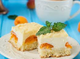 rezept saftiger aprikosen schmand kuchen freundin de