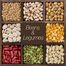 legume cuisin which is the best protein rich food in india quora