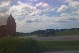 Amish Horses: August 2013 Amish Horses April 2016 For Sale Featured Listings Kalona Homes For Property Search In Single Familyacreage Sale Iowa 20173679 Tours Chamber September 2014 Ia Horse Auction Pictures Of Amana Colonies Day Trip To Girl On The Go