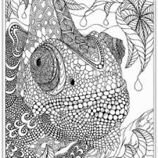 Coloring Pages Adult To Print Download And