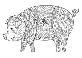 Drawing Zentangle Pig For Coloring Book Adult Or Other Decorations