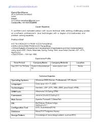 Resume Format 4 Years Experience Luxury 18 Samples For