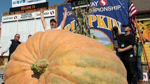 Half Moon Bay Pumpkin Festival Biggest Pumpkin by 2 363 Pound Pumpkin Weigh Off Winner Nbc Bay Area